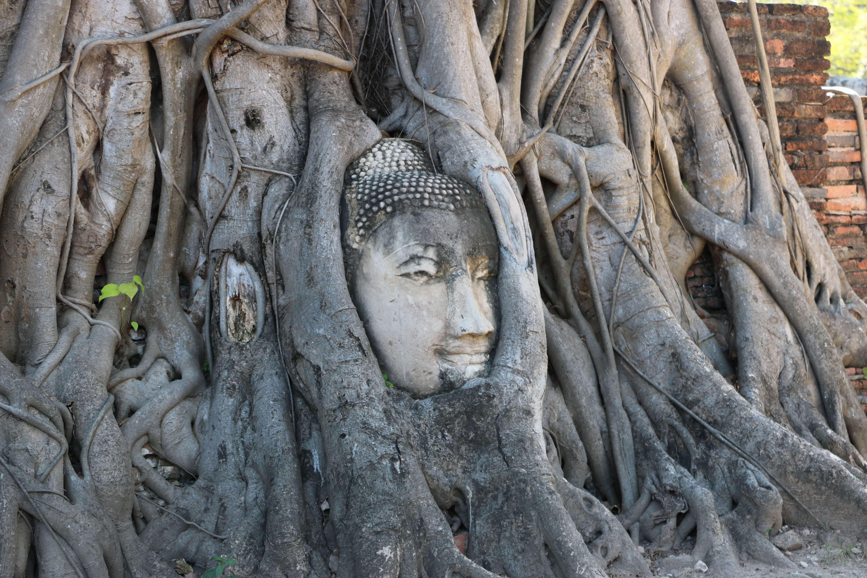 ワット マハタート(Wat Mahathat)/ 世界遺産アユタヤのシンボルともいえる寺院遺跡