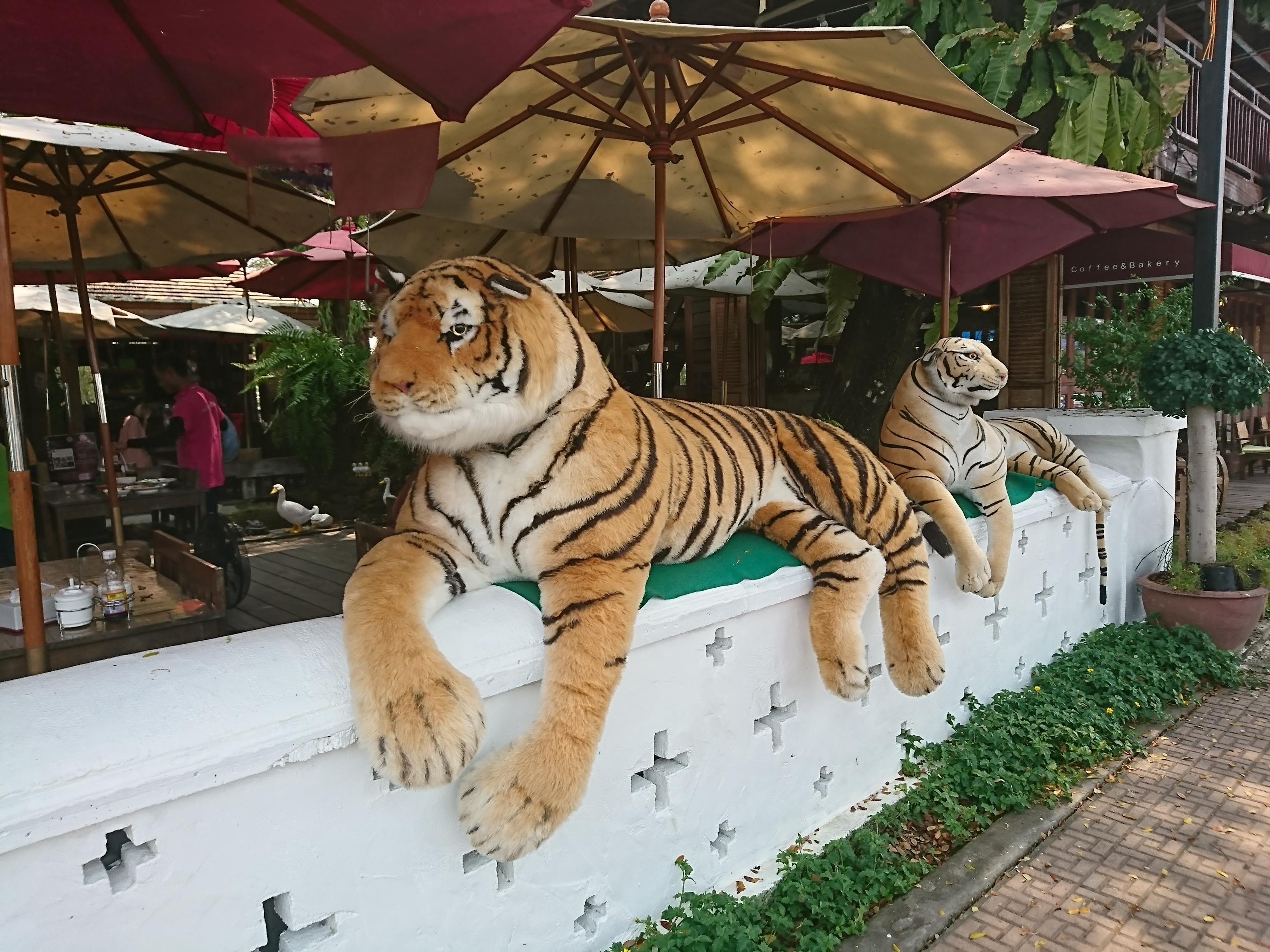 トンカンプーアヨダヤ(KAMPU Ayodhaya)/ ワットヤイの近くにある、お洒落なオープンエアーのタイ料理レストラン