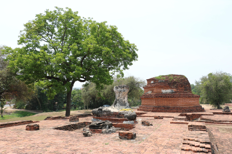 ワットワンチャイ(Wat Wang Chai)/ 非常に珍しいチェーディー(仏塔)や仏像の頭部など、他では見れない遺跡がある仏教寺院遺跡