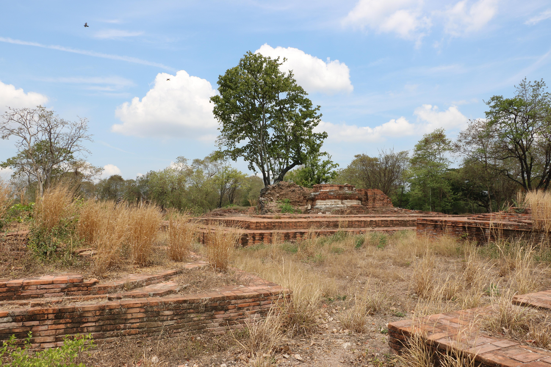 ワットプラドック(Wat Pra Dok)/ アユタヤ王朝滅亡から、存在を忘れ去られていた仏教寺院遺跡