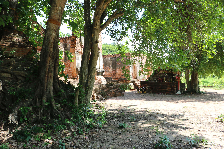 ワットポー(Wat Pho)/ 一般の仏教寺院遺跡では珍しいタムナックを有する、アユタヤ旧市街北部の遺跡