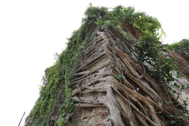 古代給水タンク(Ancient Water Tank)/ アユタヤ王朝王宮内の生活基盤を支えた、非常に珍しい灌漑設備の遺跡