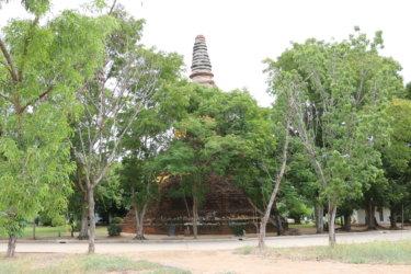 ワットボーットデーン(วัดโบสุ์แดง・Wat Bot Daeng)/ 有名観光地ワットヤイチャイモンコンの広大な敷地の一部にありながら、その存在は地元の方しか知らない小さな仏教寺院遺跡