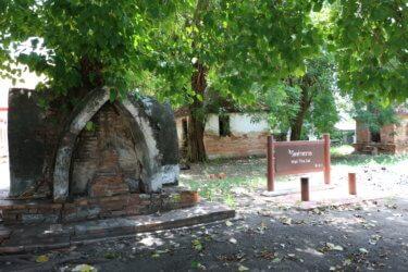 ワットターサイ(วัดราชประดิษฐาน・Wat Tha Sai)/ アユタヤ王朝時代の防衛の要である「カオプラーク要塞」と隣り合わせの現存仏教寺院